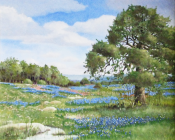Texas Spring I by Florent Baeke 20x24