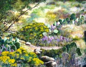 Arroyo Blooms by Rex Miller