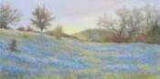 Morning Blues By Jill Randall