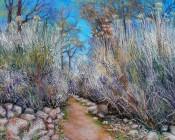 Santa Fe Path In Spring By Laurieann Dygowski