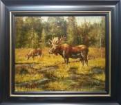 Moose By Paul Robin