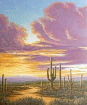 Saguaro Cactus By Jim W. Phipps