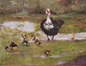 All My Children By Shirley Quaid