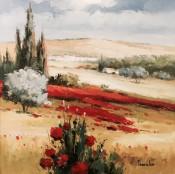 Tuscany By Thomas Kim