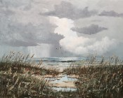 Coastal Showers By Florent Baecke