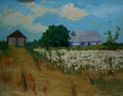 Cotton By Ellie Taylor