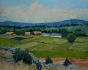 El Paso Farmland By Ellie Taylor