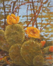 Texas Cactus By Jim Phipps