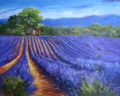 Lavender Shadows By Sheri Jones
