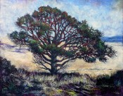Capulin Volcano - Juniper On The Edge By Laurieann Dygowski