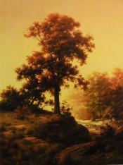 Evening Radiance - Dalhart Windberg