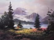 Majestic Highland - Dalhart Windberg
