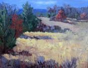 Comanche Peak Country By Sheri Jones