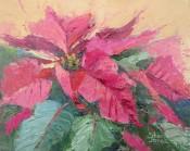 Pink Poinsettia By Sheri Jones