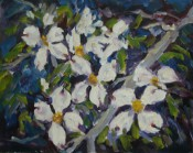 Dogwood Blossoms By Ellie Taylor