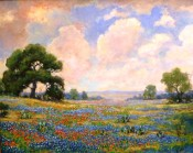 Spring In Texas By Jerry Valentine Malzahn