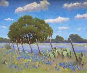 Bluebonnet Fence Line By Bob O'Brian