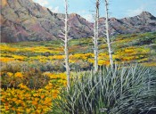 Poppies In The Franklins By Rex Miller