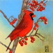Red Cardinal By Virginia Montfort