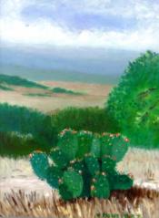 Spring in Texas - Cactus By Virginia Montfort