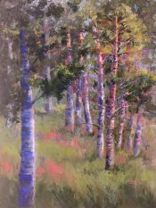 Aspens in the Morning By Sheri Jones