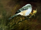 Mockingbird By Tina Bohlman