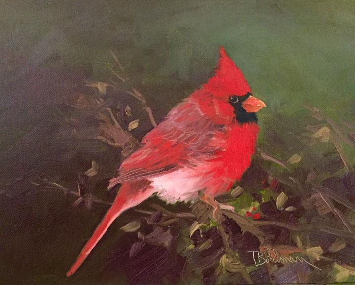 Mr. Cardinal By Tina Bohlman