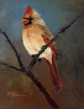 Mrs. Cardinal By Tina Bohlman