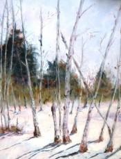 Aspens In The Snow By Nancy Bozeman