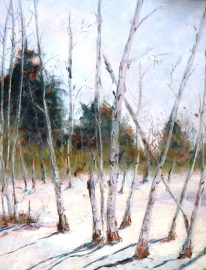 Aspens In The Snow By Nancy Bozeman