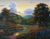 Hill Country Radiance By Kyle Wood