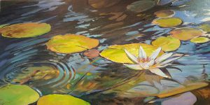 Water Lilies By Donna Page