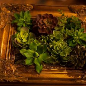Mini Faux Succulent