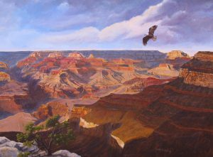 Where Eagles Soar By David Leister