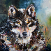 Wolf By Laurie Pace