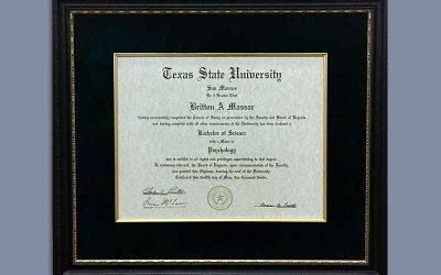 The Professional: Diploma