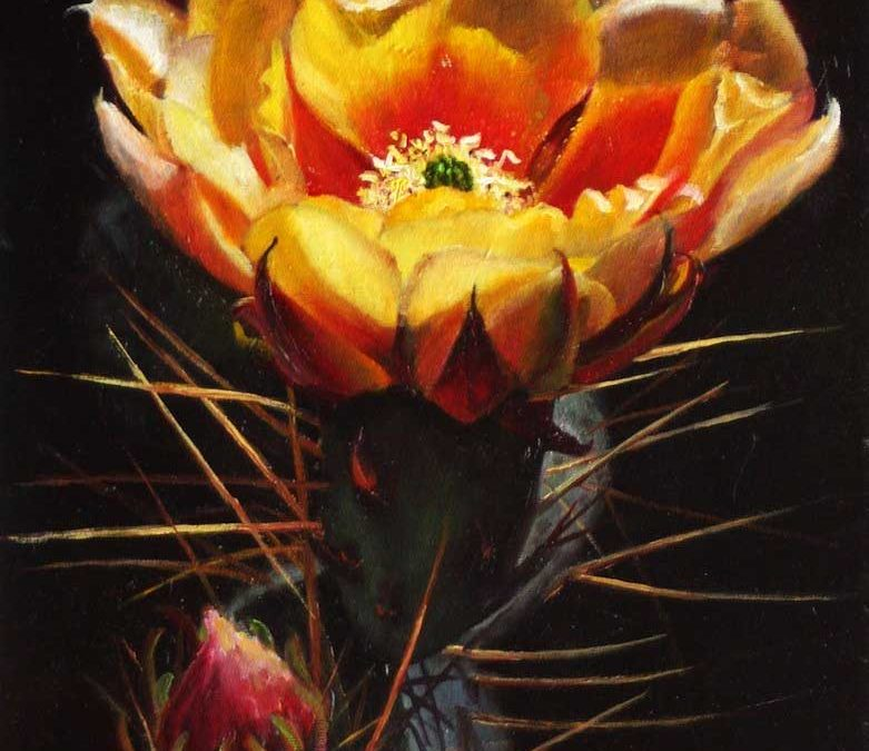 Yellow Cactus Flower by Jean Olliver